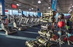 Photo from Gym Plus - Drogheda